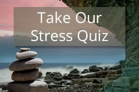 Take Our Stress Quiz